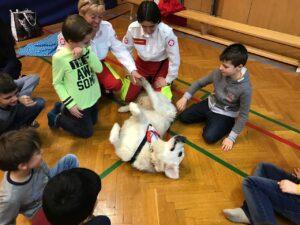 Samariter Hunde haben uns besucht