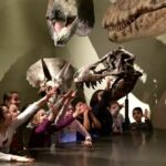 Dinosaurier-3